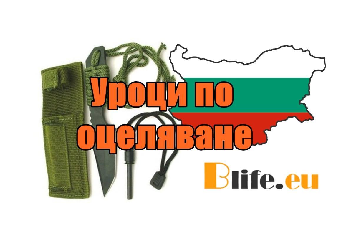 """Уроци по оцеляване: """"Как до оцелееш в гората: уроци от руските военни разузнавачи"""""""