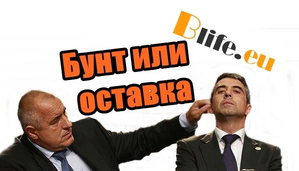 Бунт или оставка +ВИДЕО