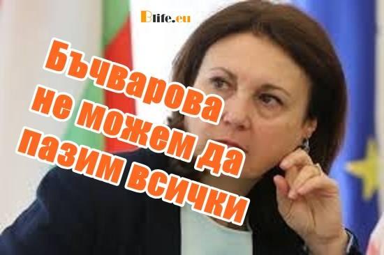 Бъчварова: Не можем да пазим всички Българи