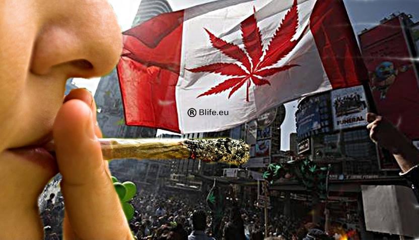 Легализацията на Марихуаната и ченгетата тук и в Канада