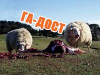 ГА-ДОСТ