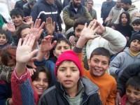 Ромите в България са общество с привилегии