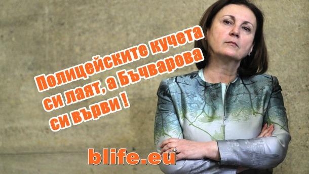Полицейските кучета си лаят, а Бъчварова си върви !