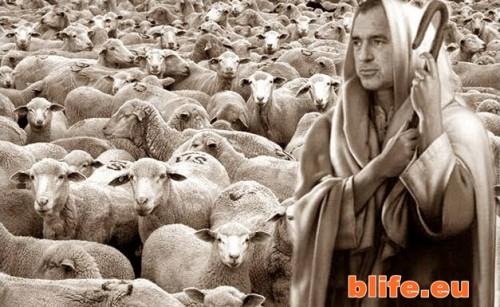 Има ли такова нещо като демокрация или сме овча нация!