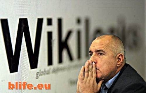Уикилийкс за Борисов!