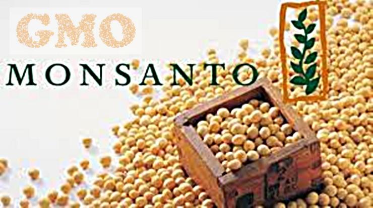 """Европейската комисия одобри вноса на генетично модифицирана соя на """"Монсанто"""""""
