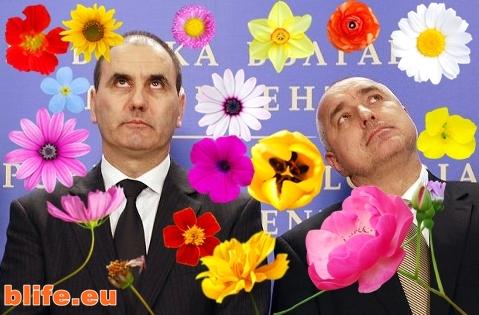 Бойко и Цветанов