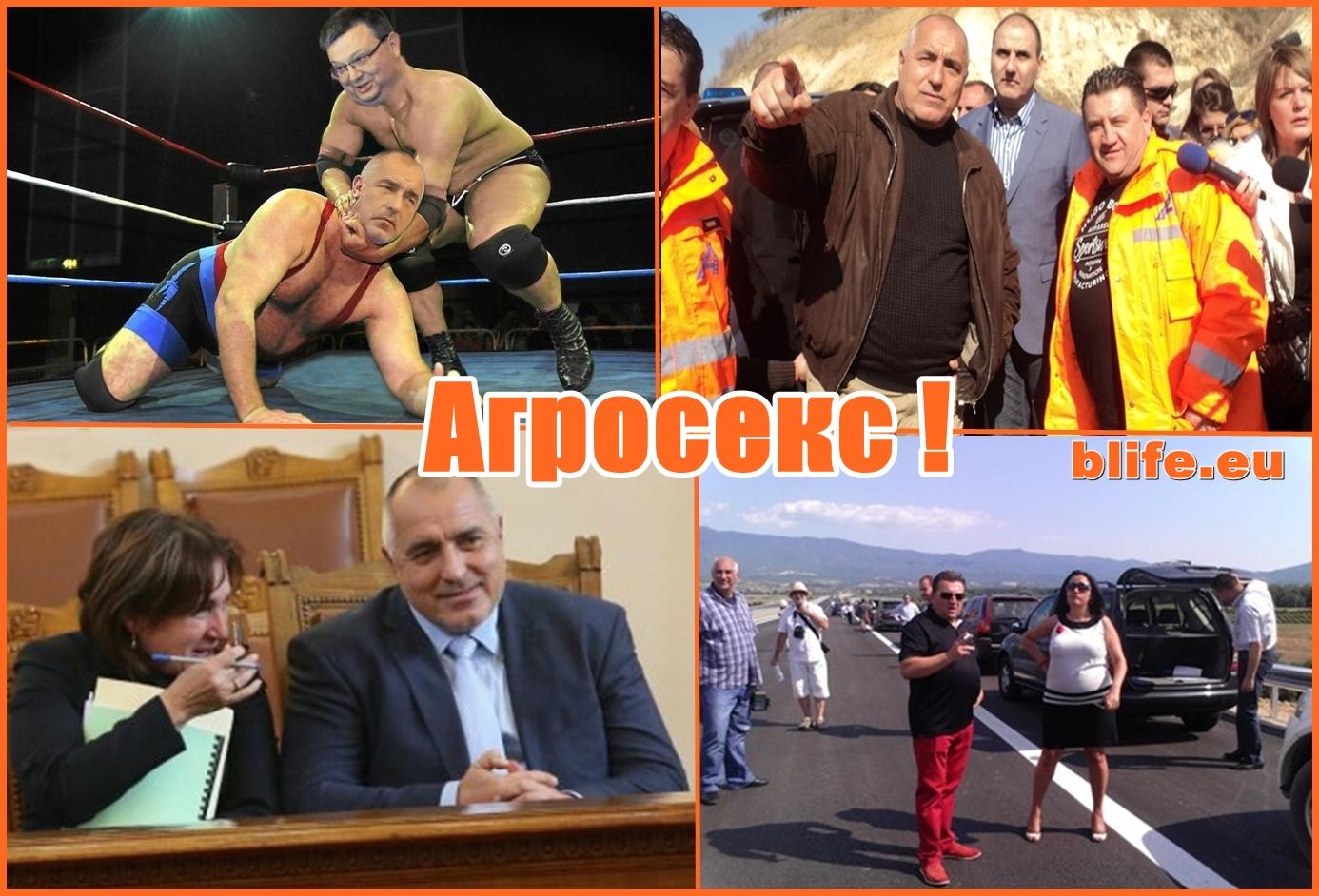 """Бъчварова метна шефа на """"Агромах"""" Методи Бачев"""