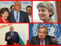 Защо Бокова и защо оставка ?