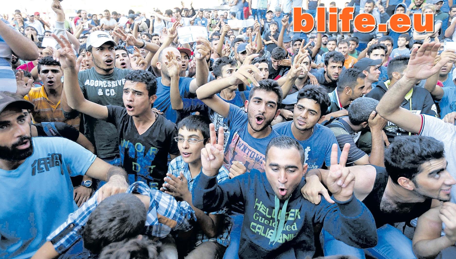 мигрантска вълна