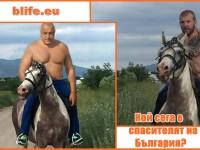 Да върнем диктатора Борисов на бял кон !