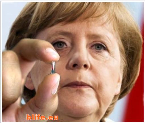 Меркел чип