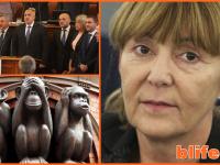 Кабинета в паника ! Моника Маковей : Мога да Ви стана министър на правосъдието Stefan Projnow