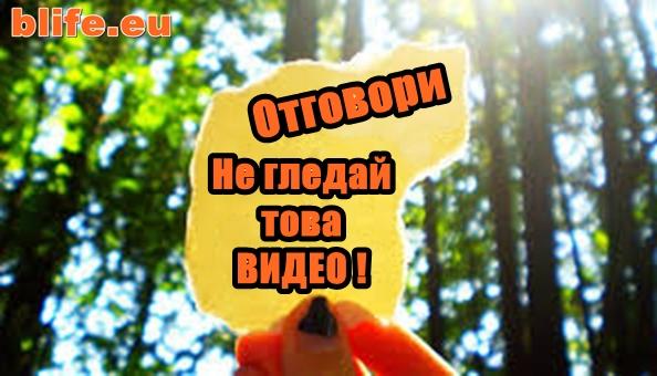 Отговори Стефан Пройнов