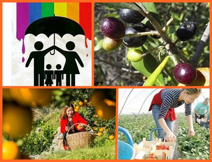 Българите - икономически емигранти