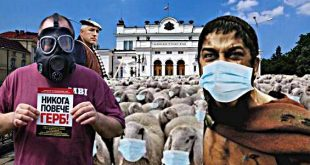 Триумфът на стадото или краят на една пастирка!