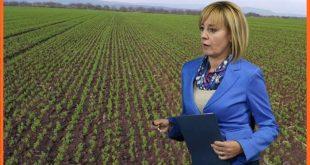 Мая Манолова! В агросектора ври от проблеми!