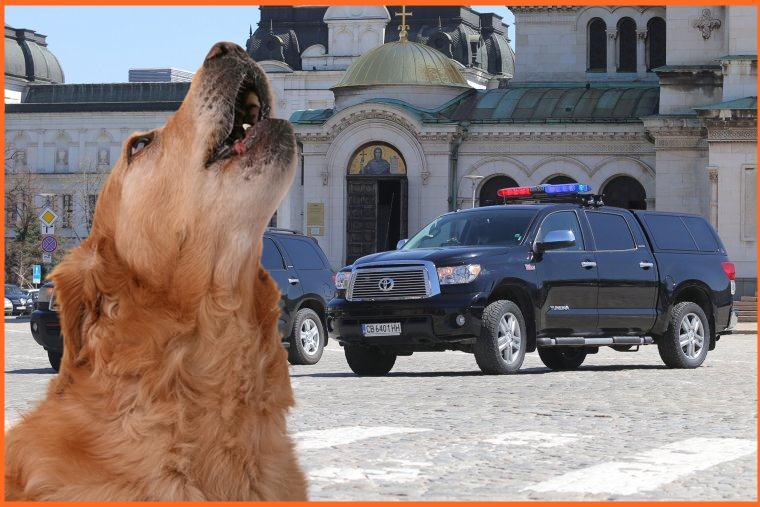 Кучетата си лаят, джипката си върви!