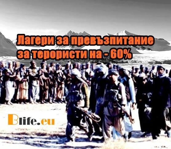 Лагери за превъзпитание за терористи на - 60%