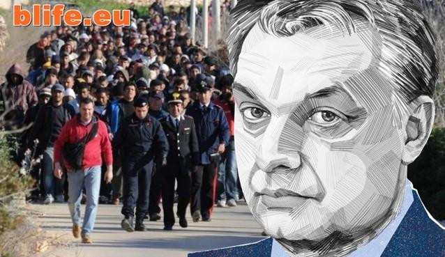 Унгария започва арести на всички бежанци в страната си !