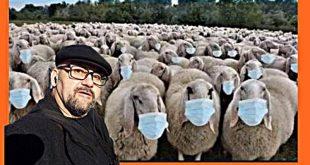 Стефан Пройнов: Овце ли сме?
